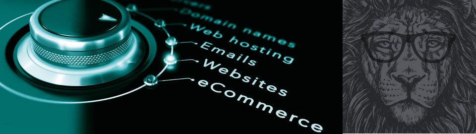 Website Desing and Dev